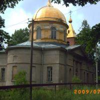 Спасо-Преображенский храм, Дружная Горка