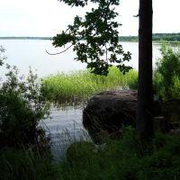 The Orlinsky lake, Дружная Горка