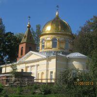 Спасо-Преображенская церковь, Дружная Горка