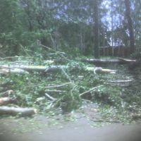 Посёлок Нагорный после урагана 08.07.2007., Дубровка