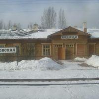 Efimovskaya Railway Station, Ефимовский