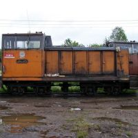 тепловоз ТУ6(Narrow-gage diesel locomotive), Ефимовский
