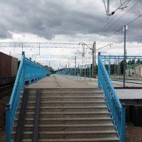 Platform, Зеленогорск