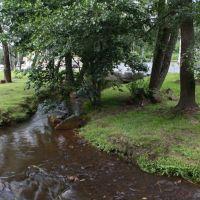 Stream, Зеленогорск