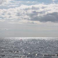 Bright sea, Зеленогорск