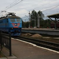 Sibelius train, Зеленогорск