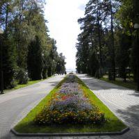 Зеленогорск / Zelenogorsk, Зеленогорск