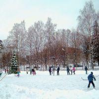 ЗЕЛЕНОГОРСК. Каток. / Zelenogorsk. Skating rink., Зеленогорск