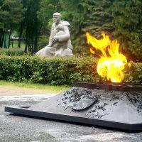 ЗЕЛЕНОГОРСК. Вечный огонь. / Zelenogorsk. Eternal Flame., Зеленогорск