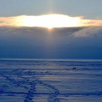 ЗЕЛЕНОГОРСК. Зимний залив. /Zelenogorsk. Winter Bay., Зеленогорск
