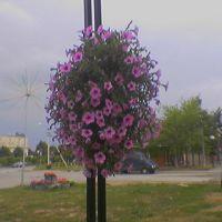 Кингисеппское шоссе  (22.08.2006г), Ивангород