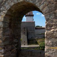 Нарвская крепость через бойницу, Ивангород