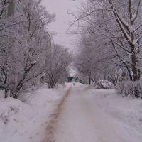 12.01.2010г Ивангород, ул. Восточная, Ивангород