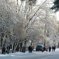 Зима в Каменногорске, Каменногорск