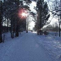 Каменногорск зимой, Каменногорск