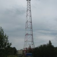 Башня Линк Девелопмент в п. Кикерино, Волосовский р-н, Кикерино