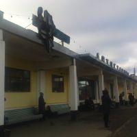 Кингисеп. Автовокзал., Кингисепп