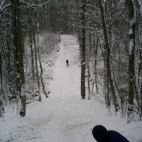 Лыжи, Кингисепп