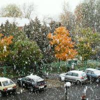 Первый снег, Кингисепп