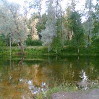 Остров, тарзанка, Кобринское