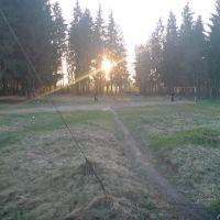 Поляна на Новом Посёлке, Кобринское
