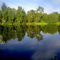 Утренняя идиллия, Кобринское