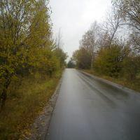 Дорога в Прибытково, Кобринское