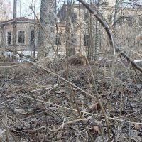 Заброшенная мыза Руново, Кобринское