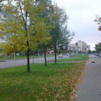 Тверская ул., Колпино