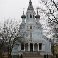 г. Кронштадт, церковь Владимирской Иконы Божией Матери.., Кронштадт