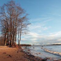 Вид на остров (view to island), Лисий Нос