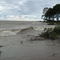 Verperluda island, Лисий Нос