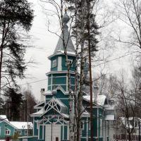 Владимирская церковь в Лисьем Носу, Лисий Нос
