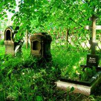 Могилы возле храма свв.апп. Петра и Павла в Лодейном Поле, Лодейное Поле