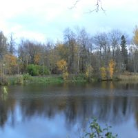 Красный пруд, октябрь 2008, Ломоносов
