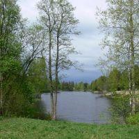 Красный пруд в мае, Ломоносов