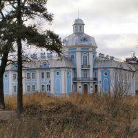 Новый дом под старину, Ломоносов