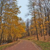 Осень в Ораниенбауме. Autumn in Oranienbaum., Ломоносов