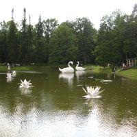 пруд у китайского дворца, Ломоносов