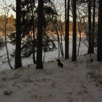Близится закат (2), Луга