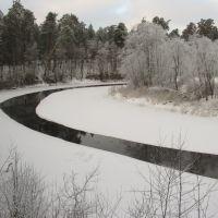 River curves (4), Луга