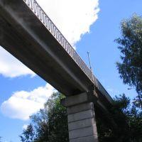 Северный пешеходный мост, Луга