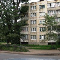 г.Луга. Июль 2008 года., Луга