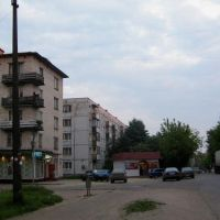Avenida Urizkogo, Луга