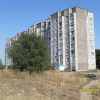микрорайон Северный д1, Павловск