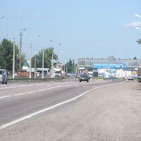 Павловск. Трасса., Павловск
