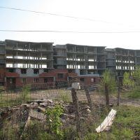 Долгострой, Павловск