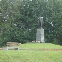 Памятник вождю. Август 2008 г., Парголово
