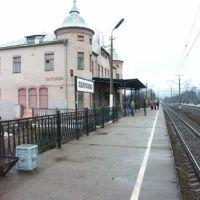 Pargolovo, Парголово