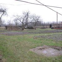 Ну и зима!.. (08.01.2007), Парголово